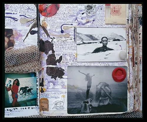 Peter Beard Diary