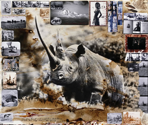 Peter Beard Rhino