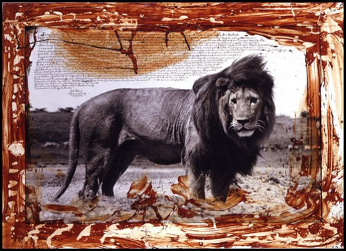 Peter Beard Lion Photo