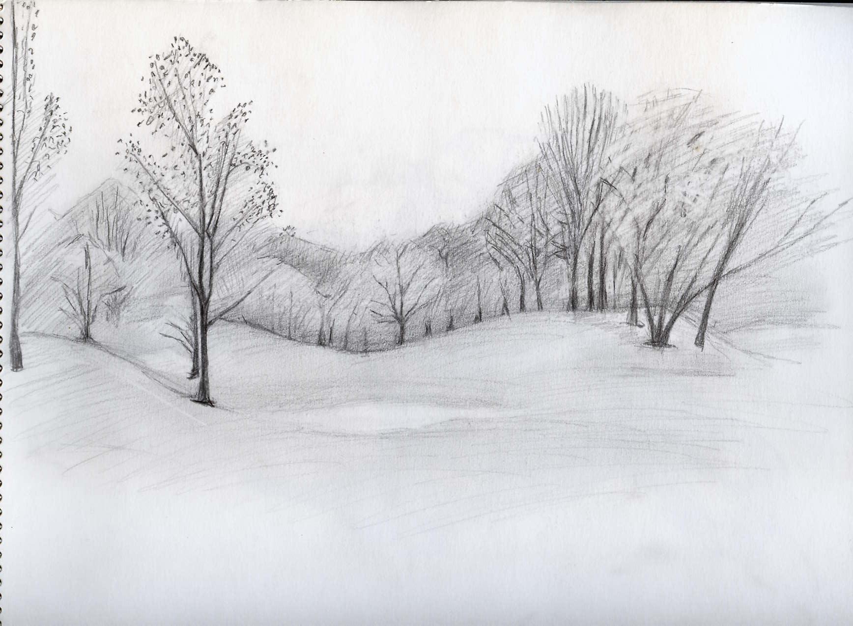 Roland Prinsler: Sketch Sheet / Skizzenblatt: Tree on a cliff |Tree Landscape Drawing