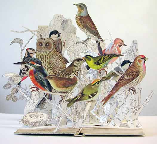 Su Blackwell - The Illustrative Book of Birds 2008