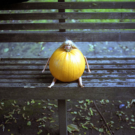 Pumpkin photograph 1998 by David Shrigley