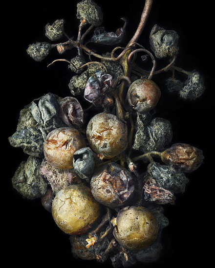 Nobel Rot 3, photograph by Peter Lippmann
