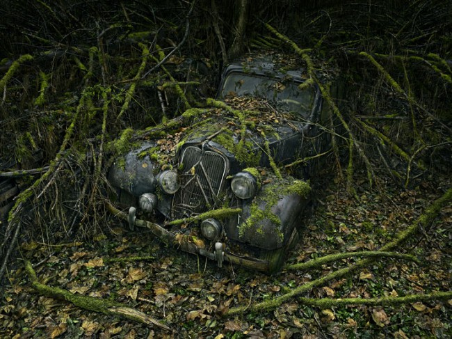 Paradise Parking 8, photograph by Peter Lippmann