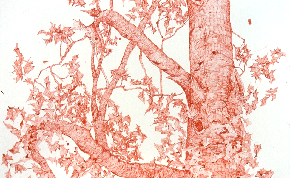 Ink on paper (detail), Installation at White Columns NY, by Joan Linder