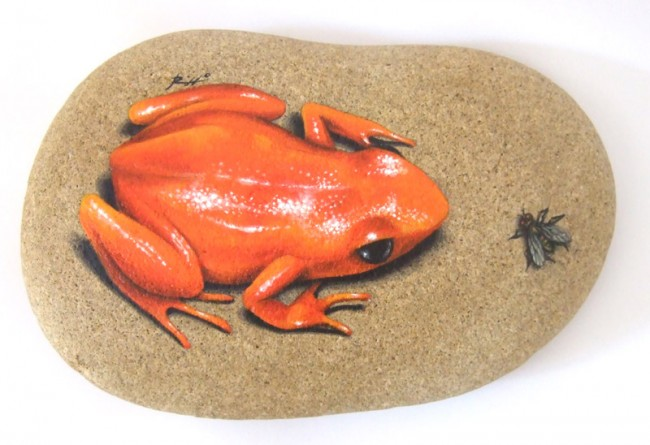 Golden frog and fly, paint on stone by Roberto Rizzo