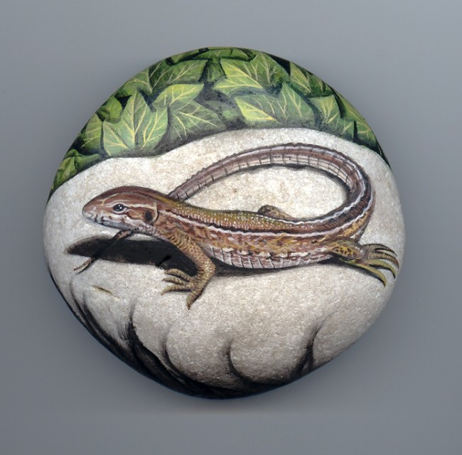 Lizard, paint on stone by Roberto Rizzo