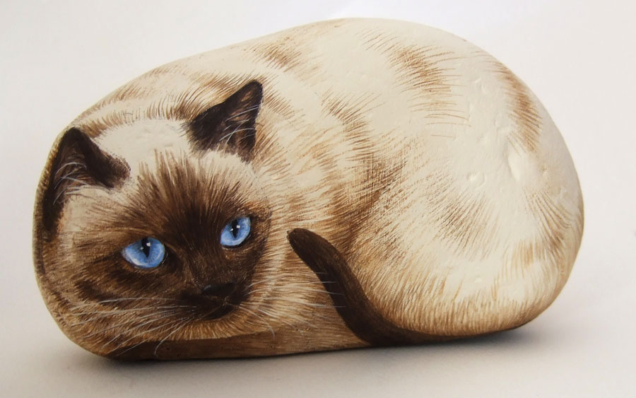 Siamese cat paint on stone by roberto rizzo