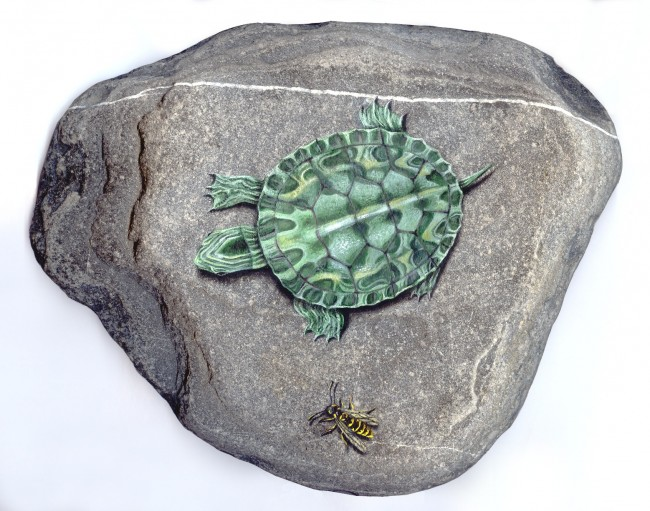 Turtle and Wasp, paint on stone by Roberto Rizzo