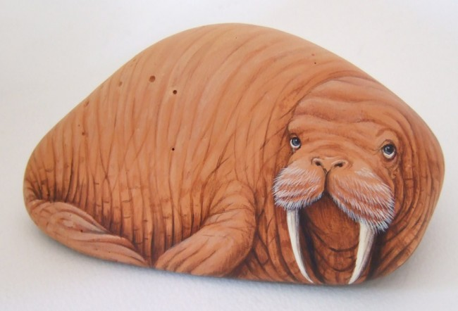 Walrus, paint on stone by Roberto Rizzo