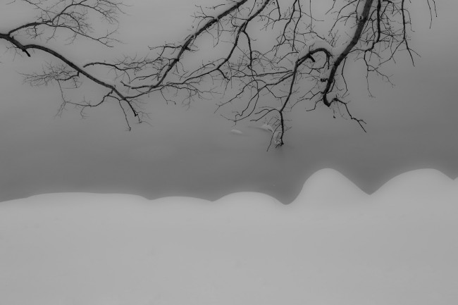 Winter Scene #13- Delicatesse Japonaise. The Lake, Central Park. Post-Nemo. Photograph by Ric Camacho